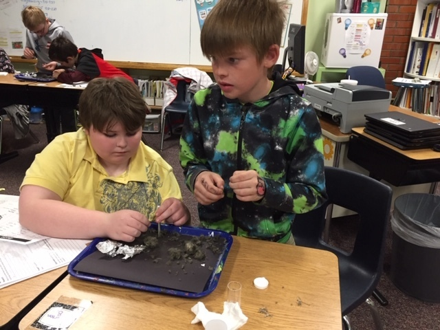 One boy sitting and one boy standing dissecting owl pellets.